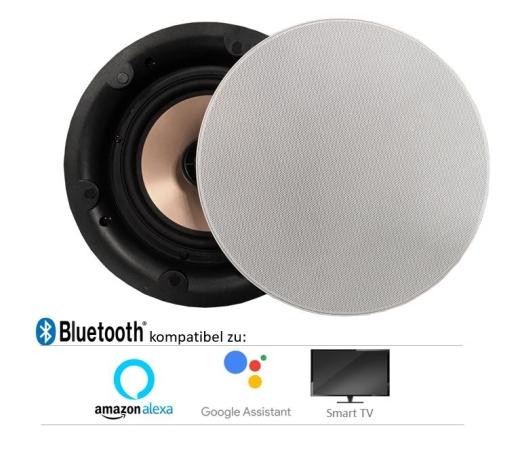 DAN-VAST-172 Einbau-Decken Lautsprecher Bluetooth wireless