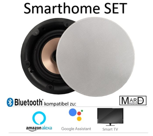 DAN-VAST-172 Smarthome Einbaulautsprecher SET